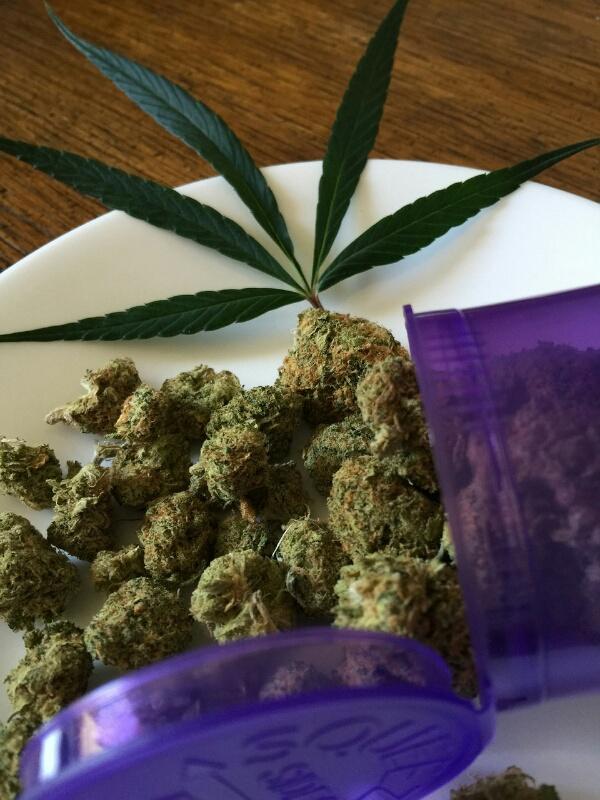 """alt=""""Cannabis Sativa (maconha) medicinal"""""""