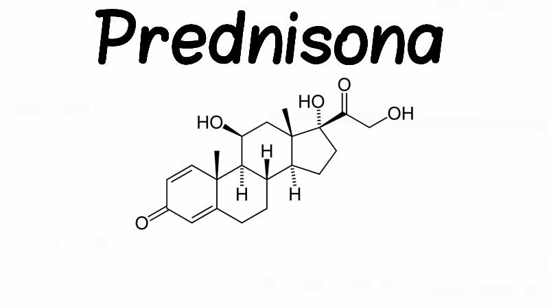 """alt=""""Prednisolona versus Prednisona: Qual é a diferença?"""""""